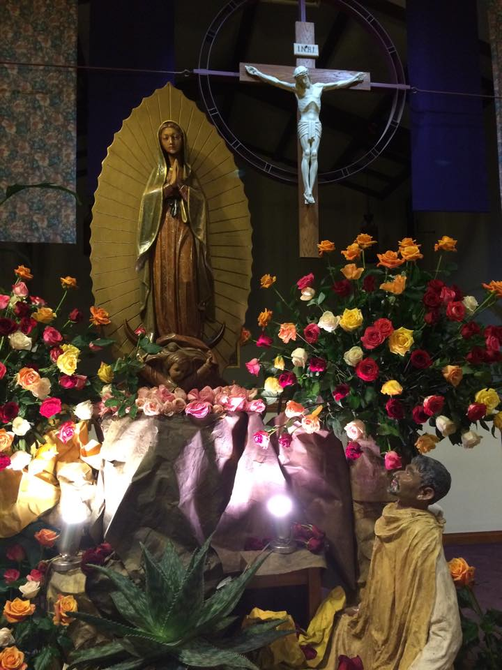 Guadalupe Feast 2014 – Photos