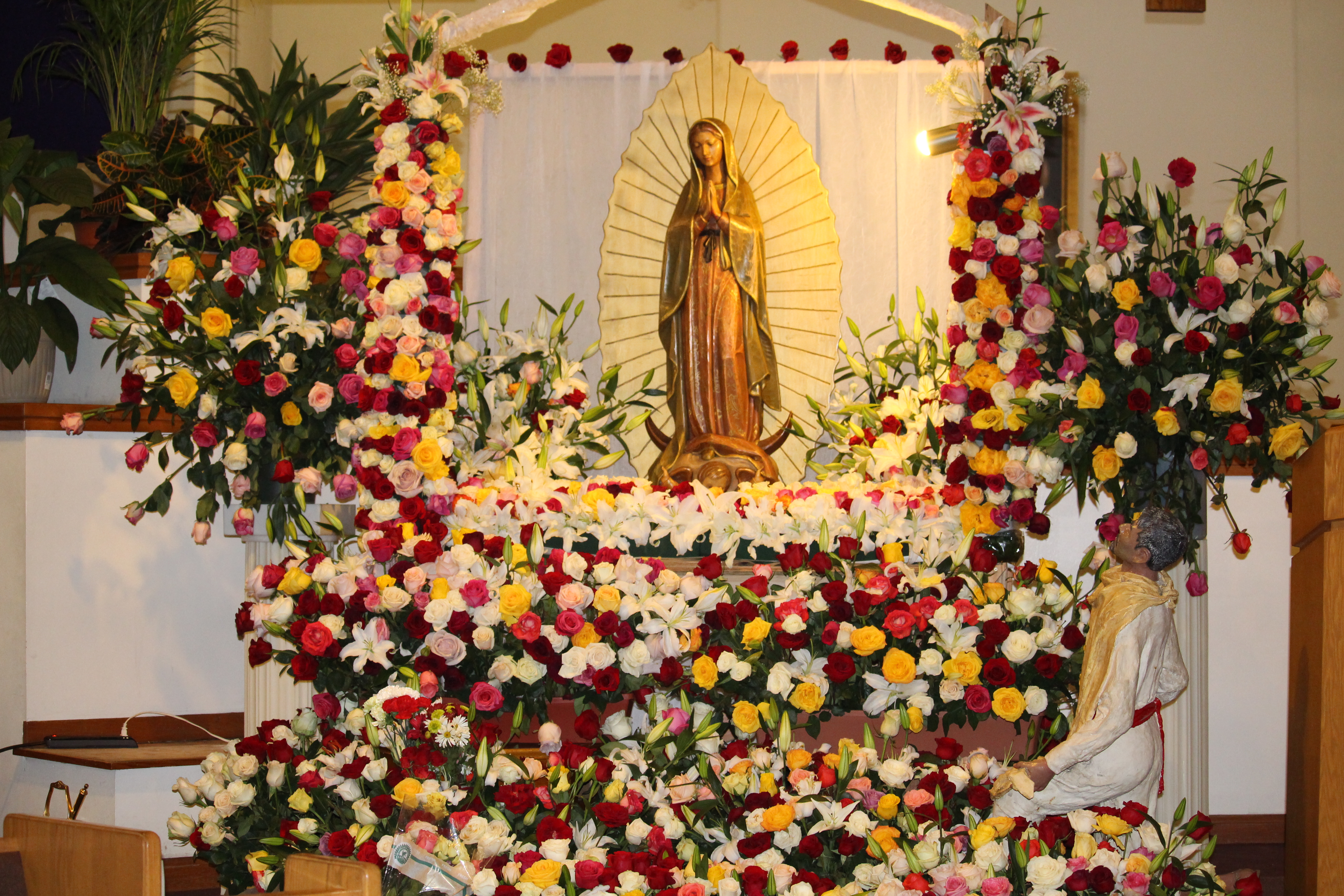 Feast of Our Lady of Guadalupe 2015 Photos
